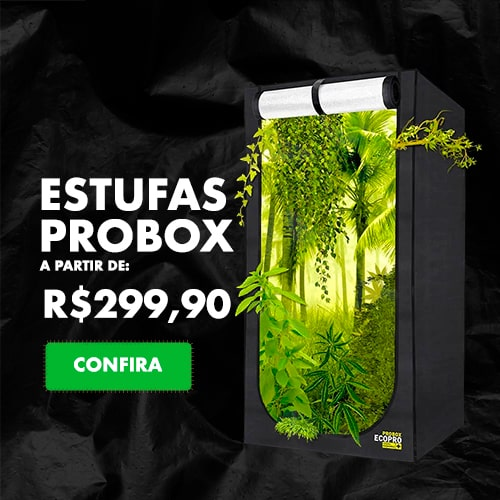 Banner-site-estufa-probox-min