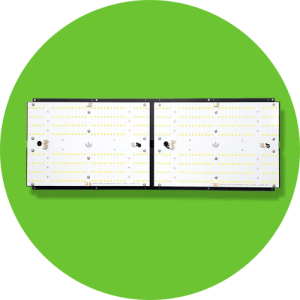 Quantum Board LED