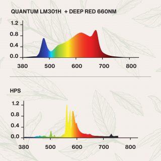 quantum espectro de luz