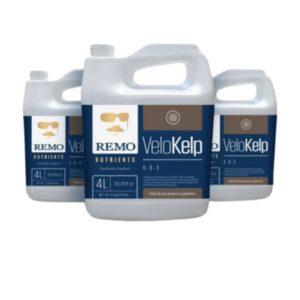 remo nutrients velokelp