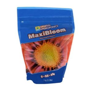 Maxibloom GH