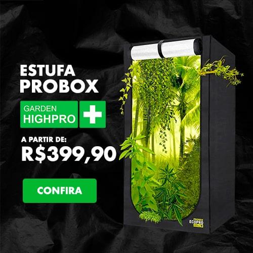 Cultiva-Banner-site-probox-min
